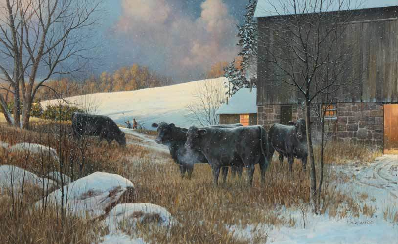 Angus cows grazing in winter - painting