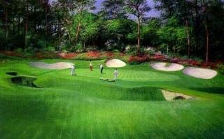 Augusta - 13th Hole
