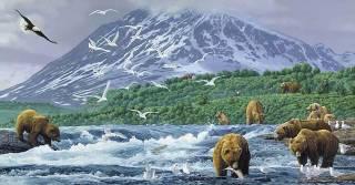 Absolute Alaska