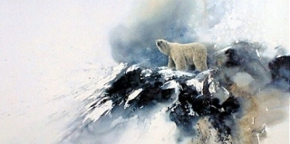 Arctic Solitude