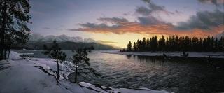 Last Light of Winter