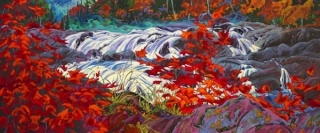 White Water Red Maples