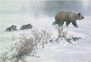 Keeping Pace - Grizzly with Cubs