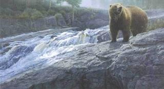 Rocky  Cascade