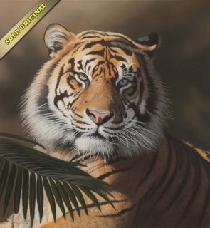 Sumatran Son
