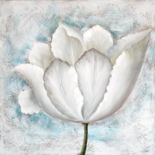 Une Fleur Blanc