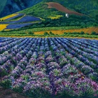 Provence Resplendent