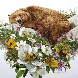 Bugged Bear