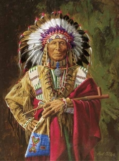 Chief of the Rosebud