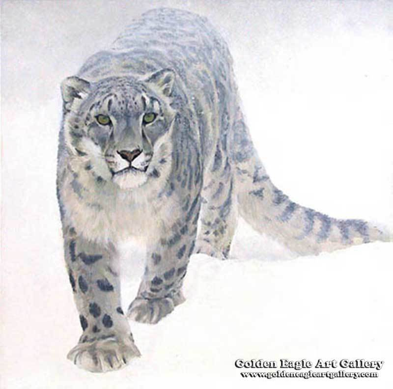 Out Of The White Snow Leopard
